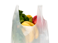 First biodegradable shopping bag