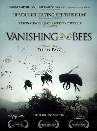Vanishing of the Bees, First of all, THIS IS A very captivating documentary called VANISHING OF THE BEES. It is something everyone should watch in the comfort of their own homes. The film explores the mysterious and massive disappearance