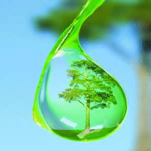 Water Conservation got green hotels and travel
