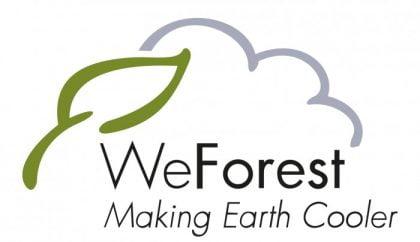 weforest-logo1-700x404