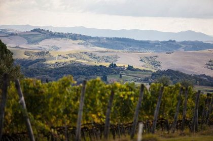 Toscana Resort Catelfalfi launches sustainable tourism in