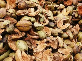 SpillFix is manufactured at our factories located within coconut plantations so minimal transportation of the raw material (coconut husks) to the processing plant is required. Our environmentally aware production employs low energy processes.