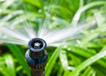 Californians: How to Conserve Water to Weather the Drought