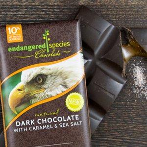Whole Foods Dark Chocolate Caramel Sea Salt