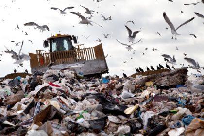Food waste, landfill, trash
