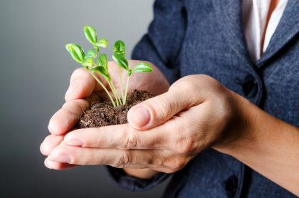 7 small steps to start making your business more green-friendly
