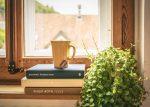 Create indoor green spaces