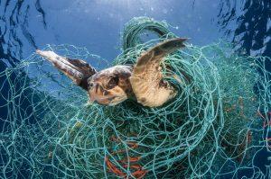 Ghost gear creates marine debris. World's biggest seafood companies must address lost fishing gear