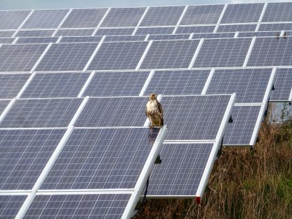Wolverine To Add Largest Solar Array In Northern Michigan