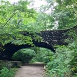 The Pittsburgh Parks Conservancy with the City of Pittsburgh is pleased to announce Pittsburgh's park system has jumped ahead of several major U.S. cities to take 23rd place out of 100. The ranking is an increase from 39th
