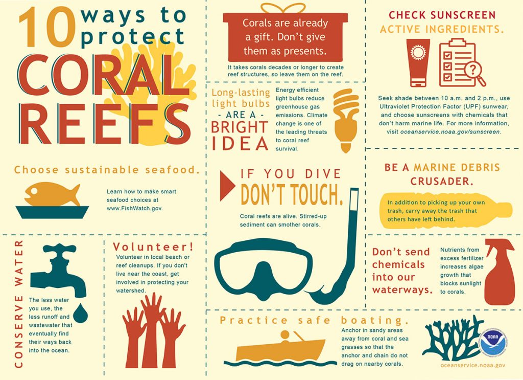 Protect coral reefs from climate change and ocean acidification